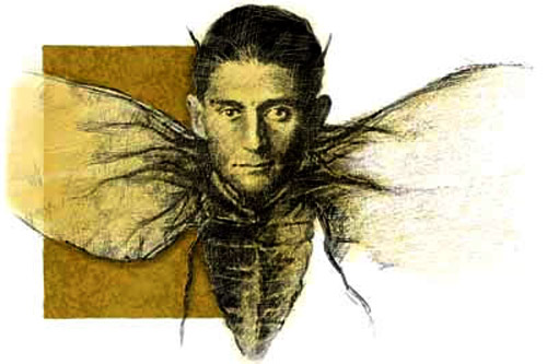Review - The Works of Franz Kafka | IMDForums